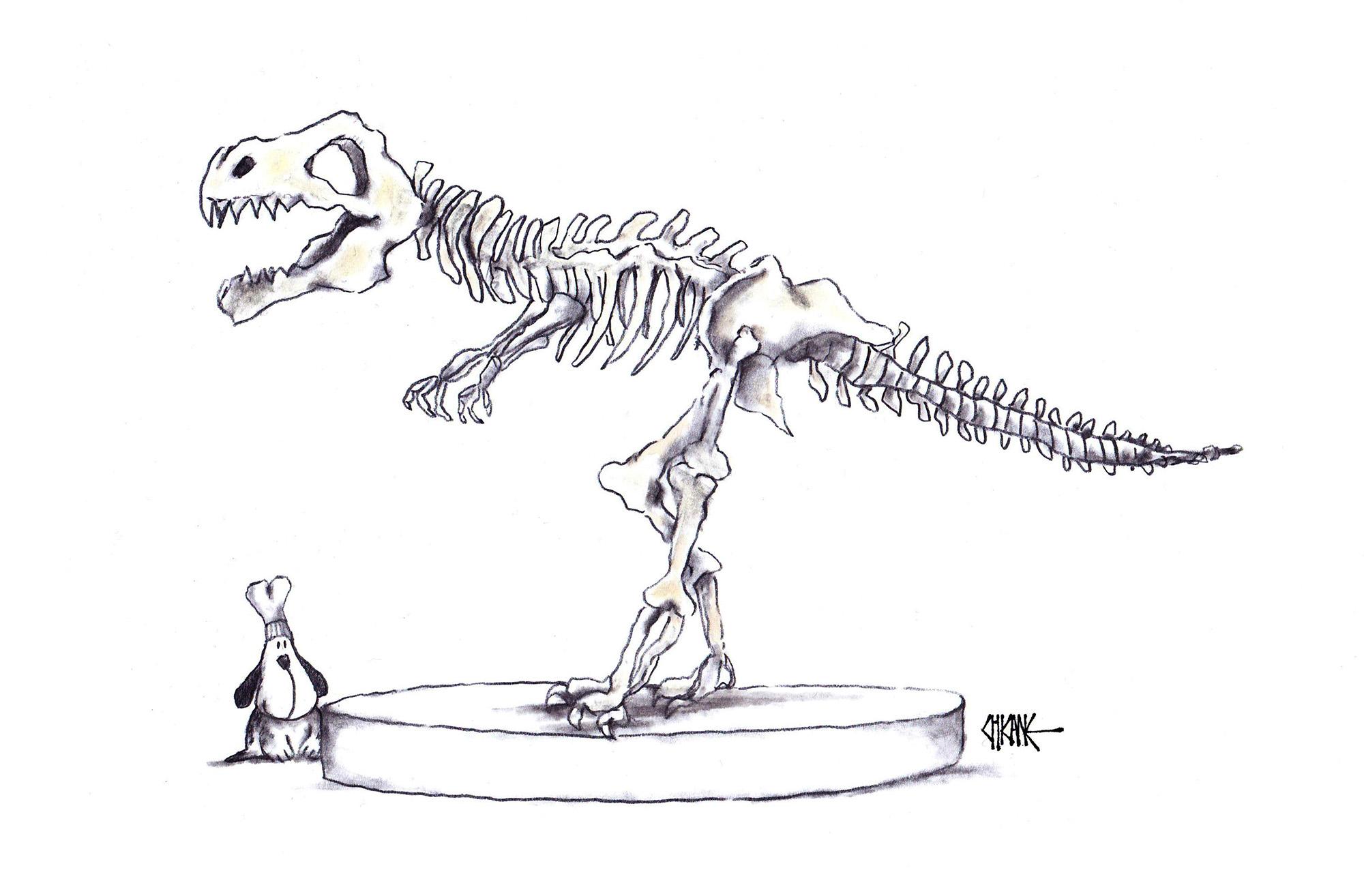 Dog chef with dinosaur bones cartoon by Chicane