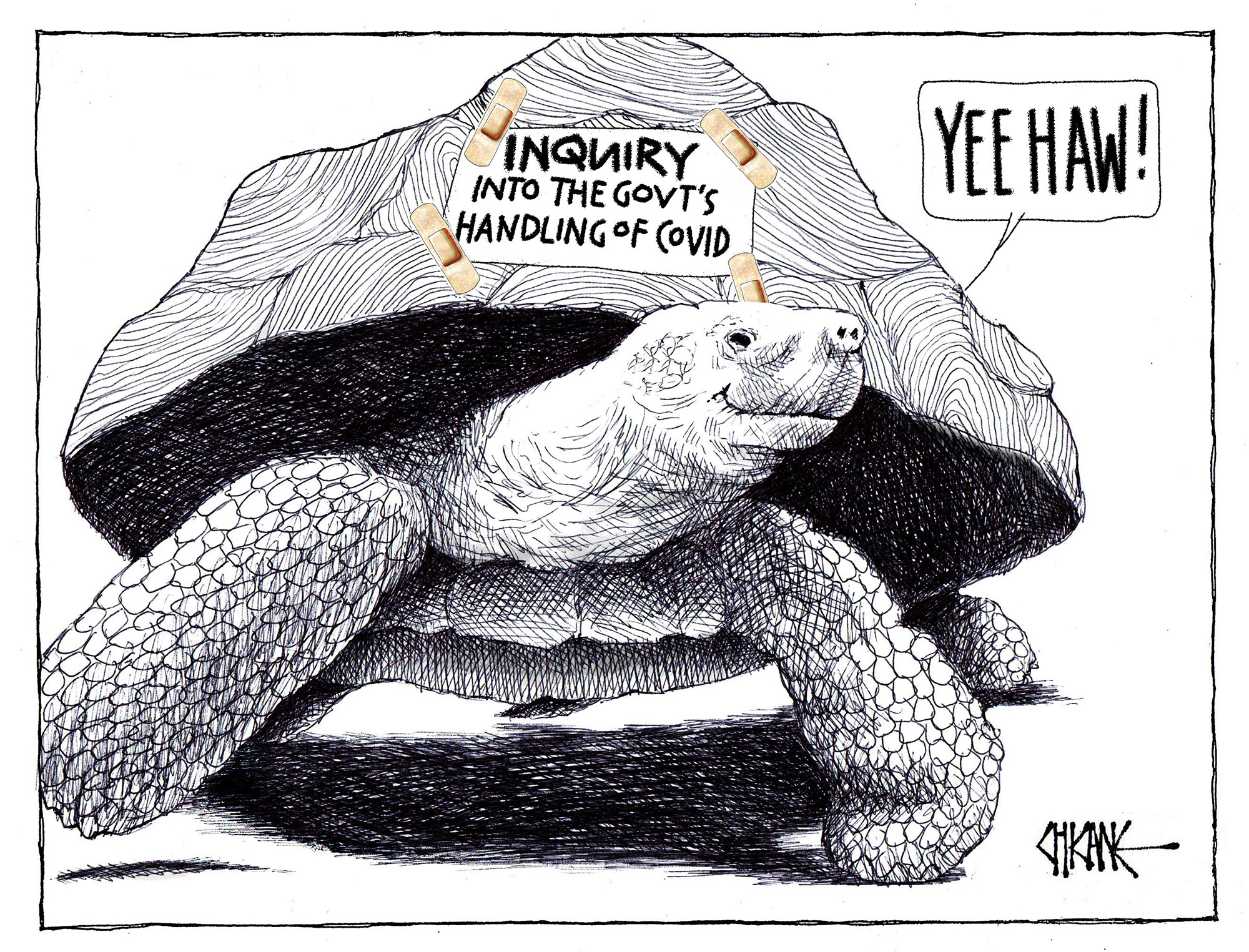 Inquiry into the Government's Handling of Covid cartoon by Chicane